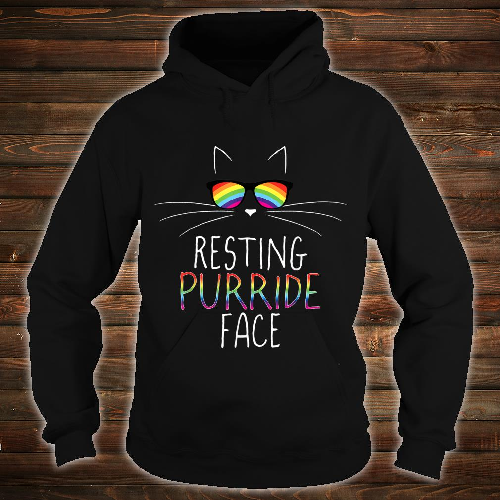 Funny Gay Pride Kitty Resting Purride Face Rainbow Cat Shirt hoodie